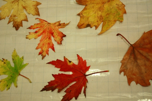 diy en dekentje herfst 058